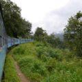 Der Zug durch das fruchtbare Hochland